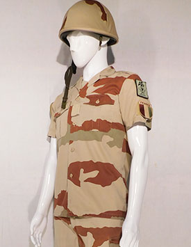 France - Current Army - Enlisted - Arid Pattern
