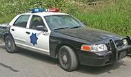 Police/ SWAT & Sheriffs Vehicles
